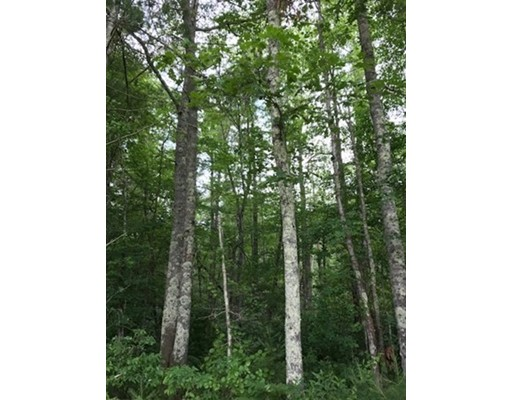 0 Prospect Road - LOT 1, Plympton, MA 02367