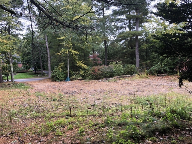 8 Lowell Road, Wellesley, MA, 02481, Wellesley Hills  Home For Sale