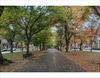 230 Commonwealth 3 Boston MA 02116 | MLS 72585350