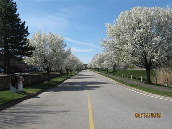 20 Corporate Park Drive, Pembroke, MA Image 2