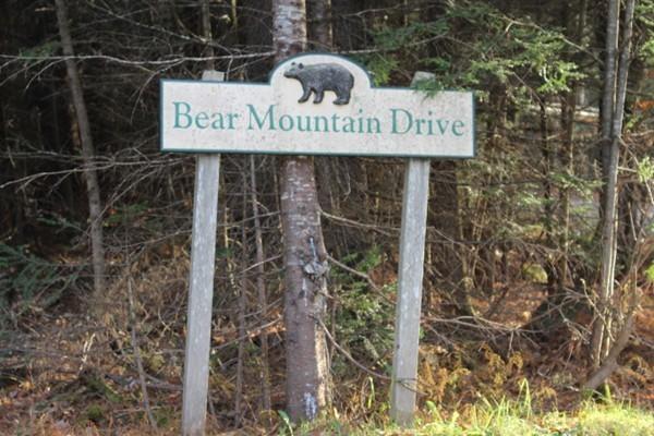 83-F Bear Mountain Drive Ashfield MA 01330
