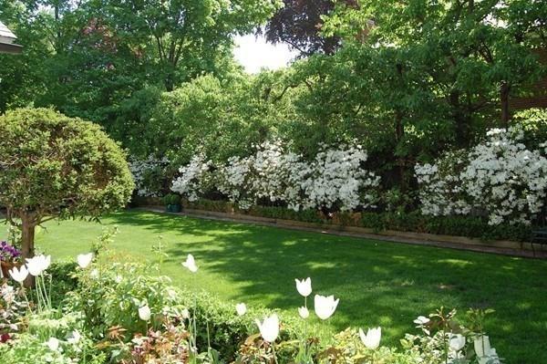 11 Gray Gardens W Cambridge MA 02138