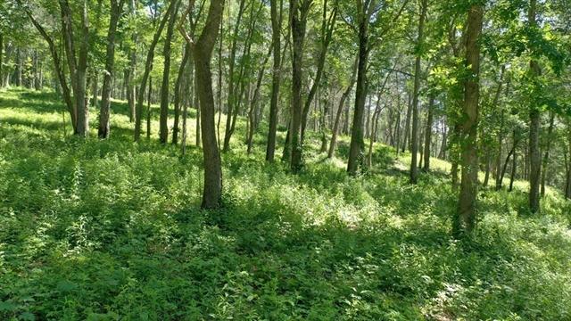 45 Pineswamp Road Ipswich MA 01938