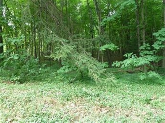 Lot 3 Mountain Road, Gill, MA<br>$75,000.00<br>2.19 Acres, Bedrooms