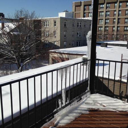92 Bragdon Boston MA 02119