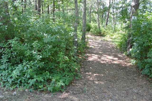 49 Lake Drive Bourne MA 02559