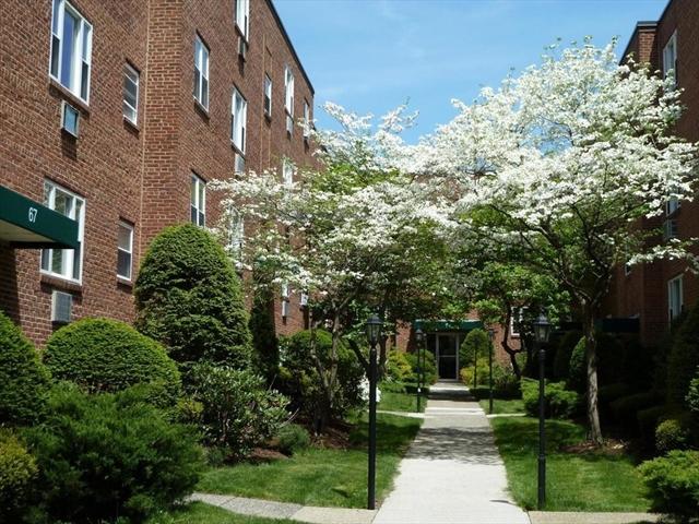 65 Colborne Boston MA 02135