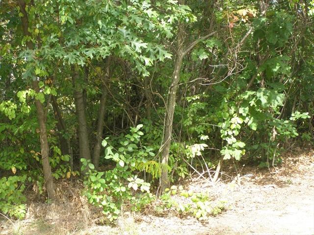 Woodruff St (Ns) L:128 Springfield MA 01101