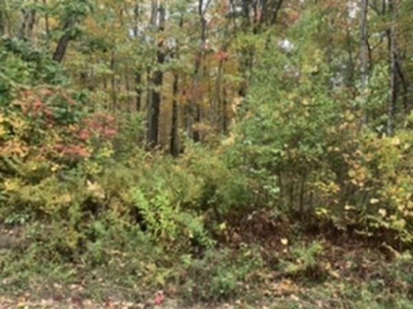 Great Woods Road Otis MA 01253