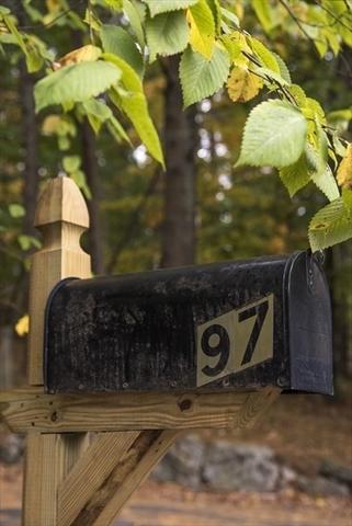 97 & 0 Bogle Street, Weston, MA, 02493,  Home For Sale