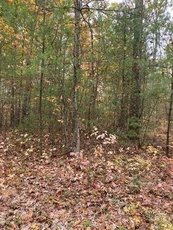 Lot 31.011 Alden Avenue Belchertown MA 01007