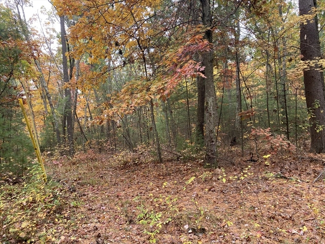 Lot 31.012 Alden Avenue Belchertown MA 01007