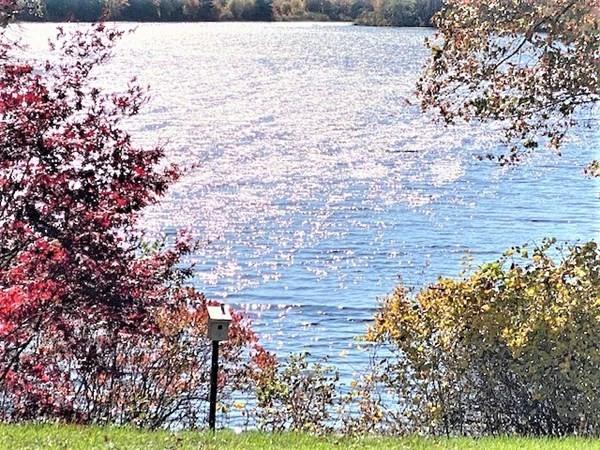43 Lake Shore Drive Middleboro MA 02346