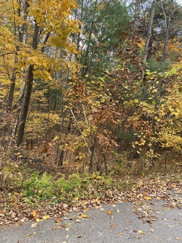 Lot 31.013 Alden Avenue Belchertown MA 01007