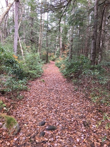 Lot 14 Bissell Road Chesterfield MA 01012