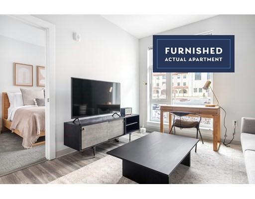 1 Bed, 1 Bath apartment in Boston, Brighton for $3,940