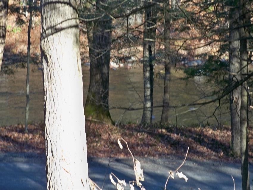 77 S. Green River Road, Colrain, MA Image 10