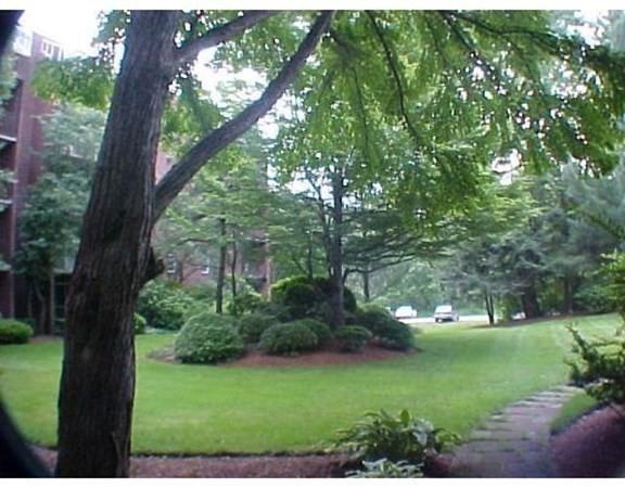 5056 Broadlawn Park Boston MA 02132