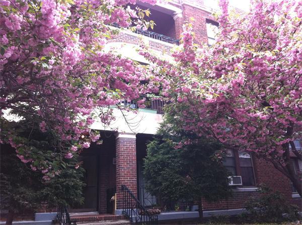317 Summit Avenue Boston MA 02135