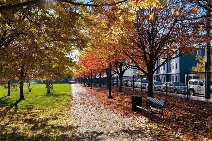 256 Bremen Street, Boston, MA Image 18