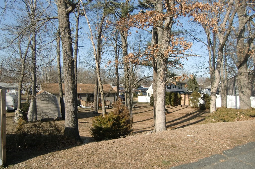 Located in an established neighborhood on a quiet street, this buildable wooded lot offers a park like setting.