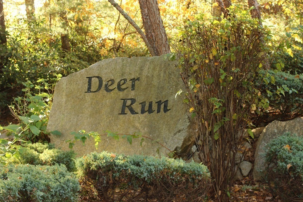 Beautiful 8 acre wooded lot at end of a cul de sac among prestigious upscale homes.