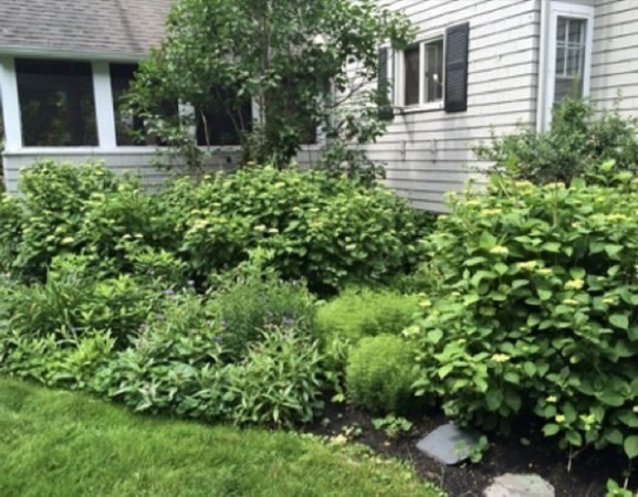 423 Tilden Road Scituate MA 02066