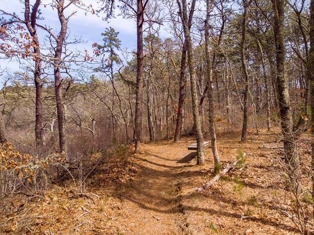 66 Massasoit Trail Brewster MA 02631