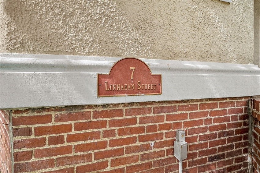 7 Linnaean Street, Cambridge, MA Image 21