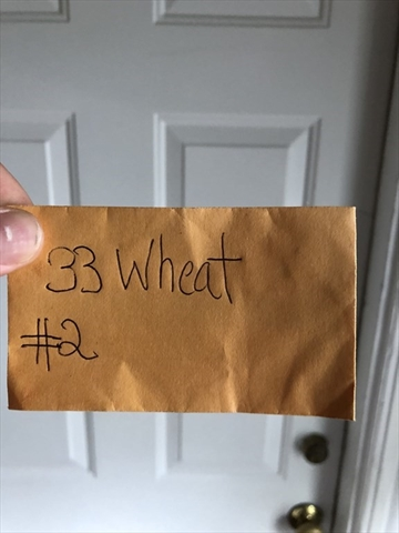 33 Wheatland Somerville MA 02145