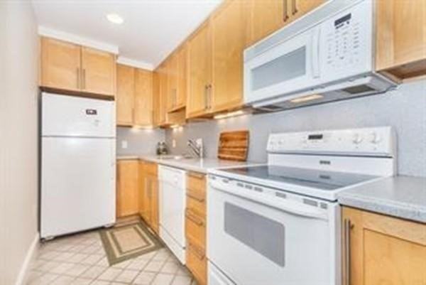 530 Mass Avenue Boston MA 02118
