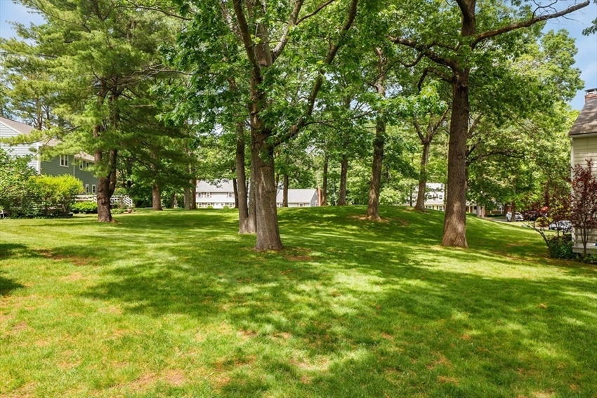 17 Meetinghouse Rd, Acton, MA Image 37