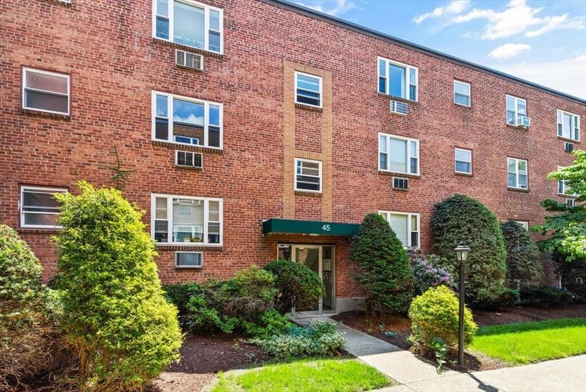 45 Colborne Rd, Boston, MA Image 3