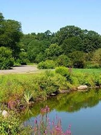 387 Hyde Park Boston MA 02131