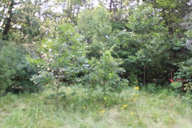 12 Flagg Hill Erving MA 01344
