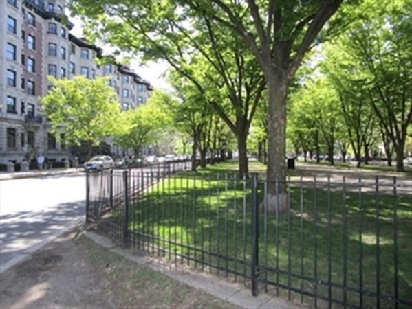390 Commonwealth, Boston, MA Image 32
