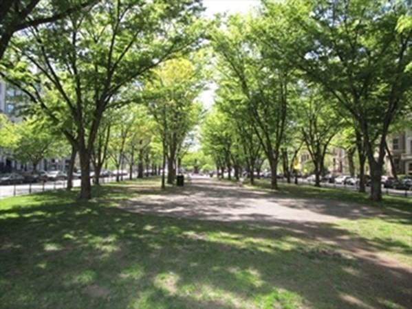 390 Commonwealth, Boston, MA Image 33