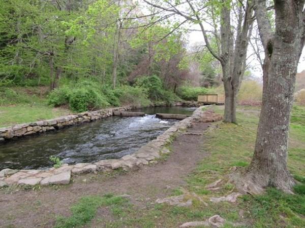 141 Herring Pond Road Bourne MA 02532